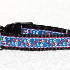 gekleurde halsbanden hond