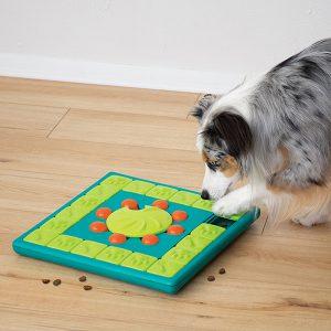 Honden denkspel - Nina Ottosson hondenpuzzel - hondenpuzzels – honden puzzel voor honden