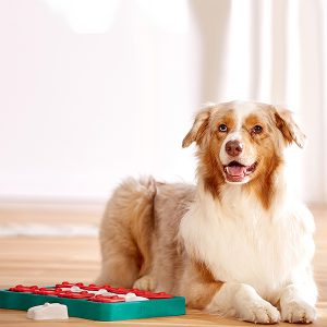 Nina Ottosson hondenpuzzel - denkspellen hond – hondenpuzzels – honden puzzel voor honden